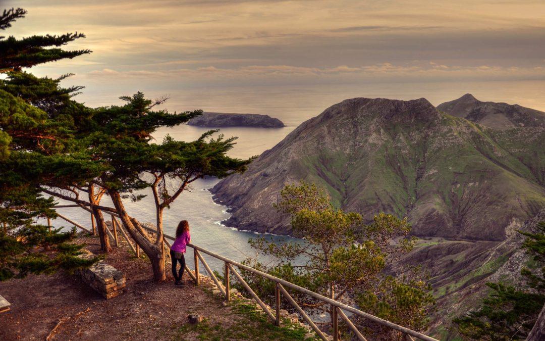 Conselho De Governo Aprova Criação Da 'Invest Madeira'
